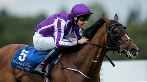 Joseph O'Brien is back in the plate at Doncaster