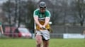 Kelly hails character as Offaly stun Wexford