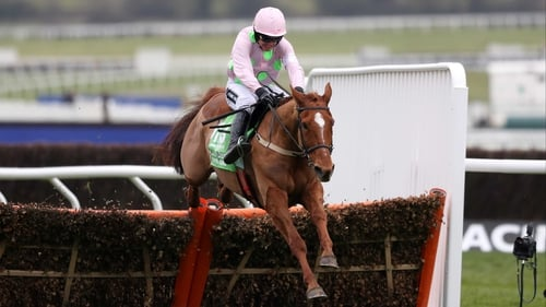 Annie Power looks like she'll be contesting her last ever race at next week's Punchestown Festival