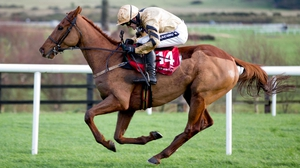 Yorkhill will contest the Neptune Investment Management Novices' Hurdle