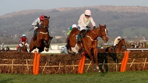Limini may go in the Champion Hurdle