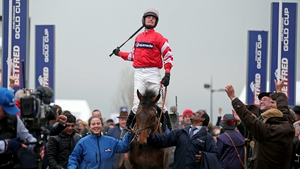 Coneygree has been retired after pulling up at Ascot