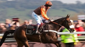 Sam Waley-Cohen celebrates after riding 'Long Run' to victory in the Cheltenham Gold Cup