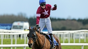 Ger Fox led home Rogue Angel in last season's Irish Grand National