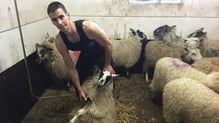 Ivan Scott set the new record by shearing 867 lambs in nine hours