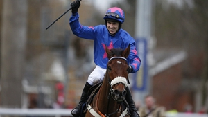 Cue Card may compete again this season