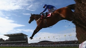 Cue Card is one of the seven horses that will go in the King George VI Chase