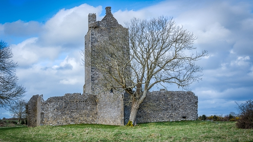 Fadein Castle, Co Galway (pic: Larry Morgan)