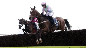 Vautour fell in the Melling Chase on his most recent outing