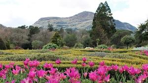 Muckross gardens, Co Kerry (Pic: Debora Tobin)