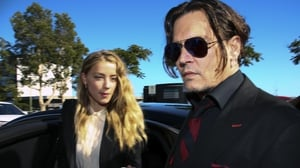 Amber Heard and Johnny Depp failed to declare her canines, Pistol and Boo, on arrival in Australia on a private jet in 2015