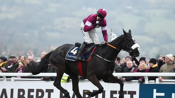 Don Cossack's finest hour came in last year's Cheltenham Gold Cup