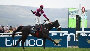 Cheltenham Gold Cup hero Don Cossack