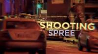 Prime Time Extras: Gun Violence in Dublin