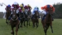 Maiden Grade One victory for Walsh on Blow By Blow