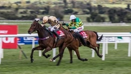 Racing from Punchestown