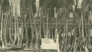 LDV Arms Cache (Pic: National Museum of Ireland)