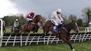 Vroum Vroum hits top gear in Punchestown Hurdle