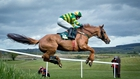 Punchestown Day 5 Tips and Previews
