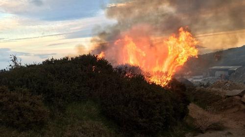 The gorse fire occurred near Barnacullia on Three Rock mountain last night (Pic: @DubFireBrigade)