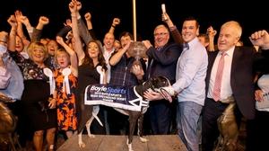 Ballymac Matt celebrates with connections after winning the 2015 Irish Derby