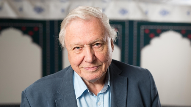 David Attenborough said he was honoured by the decision