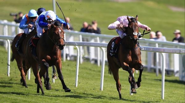 So Mi Dar (cross-noseband) beats the boys in the Investec Derby Trial at Epsom