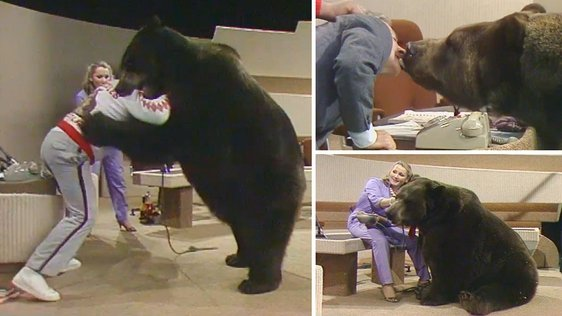 Hercules The Grizzly Bear (1984)