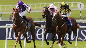 Beacon Rock was the 9-10 favourite and dominated under Ryan Moore