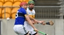 Bergin goals give Offaly platform to slay Kingdom