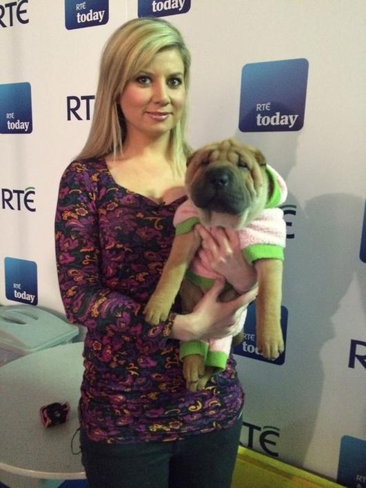 NANCI - HAS A DOG'S LIFE