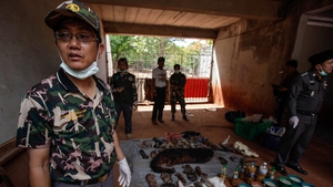 The 40 dead tiger cubs were found in a freezer in a kitchen area