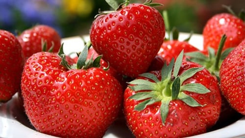 Strawberries for healthy and delicious iced lolly pops.