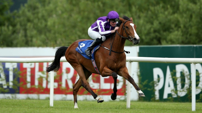 Minding lands Pretty Polly Stakes at the Curragh