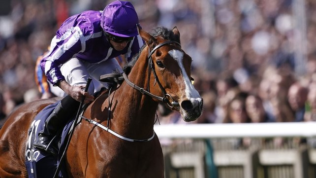 Minding is a top-price 2-7 favourite Pretty Polly Stakes