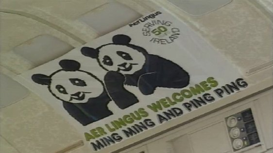 Chinese Pandas Arrive In Dublin