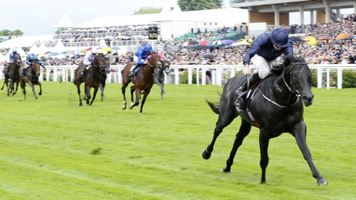 Caravaggio is no bigger than 6-1 for next year's 2000 Guineas