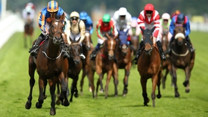Order of St George won last year's Ascot Gold Cup