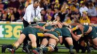 Cheika hits back at 'shallow' Hansen criticism