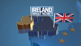 Prime Time Extras: Brexit and Ireland - what now?