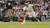 Juan Martin del Potro wins at Wimbledon