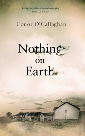 No neat ends tied in Conor O'Callaghan's unsettling tale . .