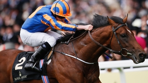 Churchill finished third in the Queen Elizabeth II Stakes at Ascot last Saturday