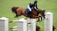 The RDS Dublin Horse Show