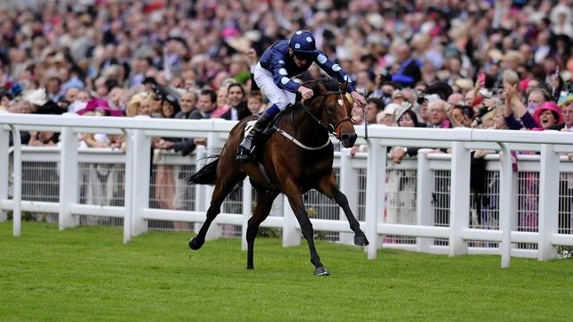 English raider Tis Marvellous wins in France