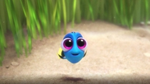 Finding Dory is in cinemas from Friday