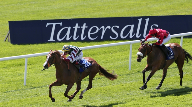 Creggs Pipes primed for Tipperary test