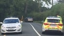 A 42-year-old man died following a head-on collision near Dunboyne, Co Meath