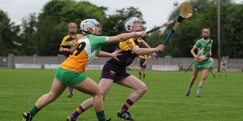 Offaly beat Wexford, Clare, Limerick and Waterford to reach the group stages