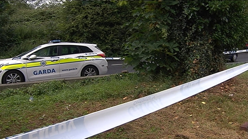 The woman was attacked in a park in Clondalkin as she walked to her home